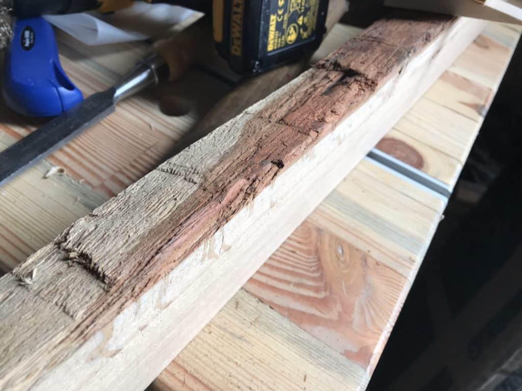 Rinde entfernen, damit die schöne Baumkante sichtbar wird.